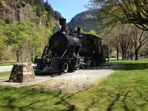 Newhalem Coal Train