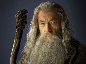 "Even Gandalf doesn't want you thinking about his age. He wants you thinking, ""Wow- Imagine hiring the White Wizard who saved Middle Earth!"""