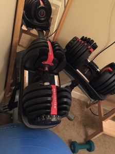 Our biggest ticket item- Bowflex adjustable weights. They are awesome, despite the price.